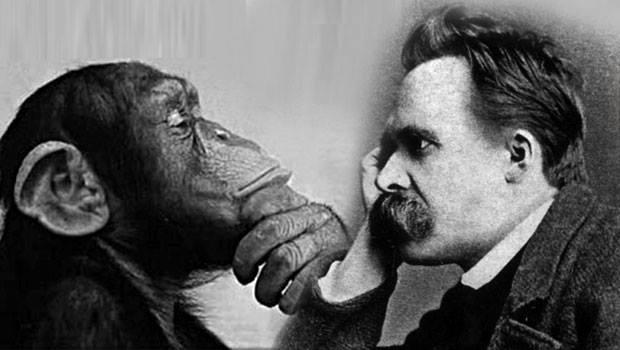 Ape and Nietzsche